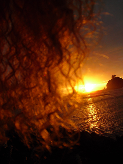 My hair enjoying the sunset at First Beach in La Push, WA.
